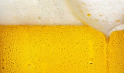 UC Santa Cruz Online Courses The Science of Beer for UC Santa Cruz Students in Santa Cruz, CA