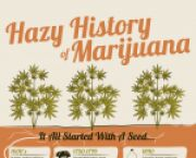 AAU News College Guide to Cannabis for Academy of Art University Students in San Francisco, CA