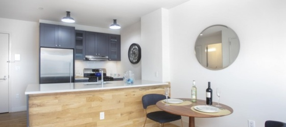 Housing Near NYU 1BR with modern, stainless steel appliances and in unit washer/dryer available for June move in! Please contact the Leasing Team for a Virtual Tour.