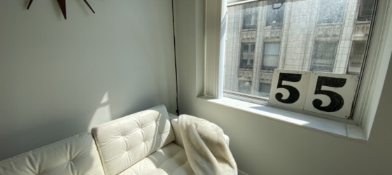 Housing FREE RENT! 2 Bedroom 2 Bathrooms Chicago Loop Millennium Park Apartment  for College Students